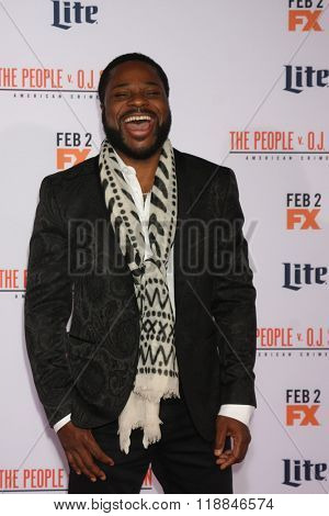 LOS ANGELES - JAN 27:  Malcolm-Jamal Warner at the American Crime Story - The People V. O.J. Simpson Premiere at the Village Theater on January 27, 2016 in Westwood, CA