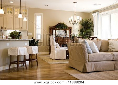 Modern tastefully decorated house