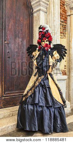 Venetian Disguise - Venice Carnival 2014