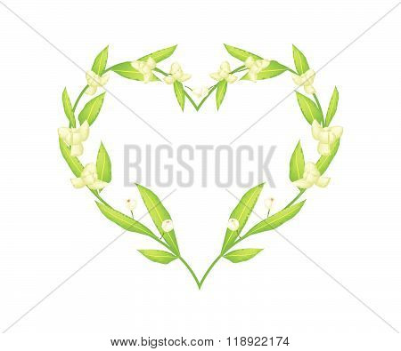 Ylang Ylang Flowers In A Heart Shape Frame