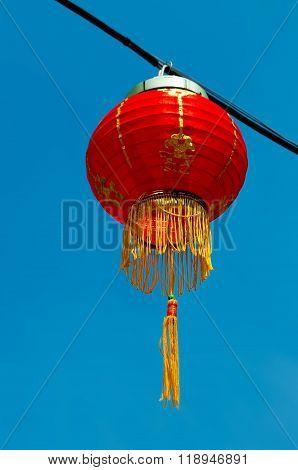 Chinese Lantern Blue Sky