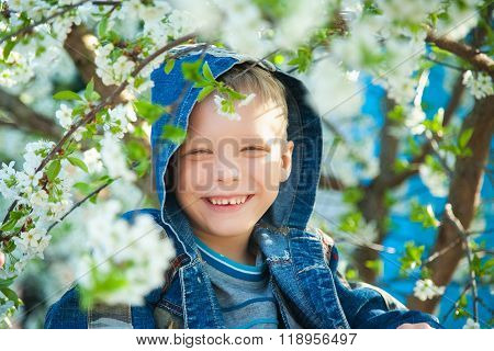 Boy Sitting Among Branches Of Spring Tree In Blossoms