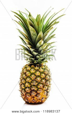 One Fresh Pineapple Fruit Isolated On White Background
