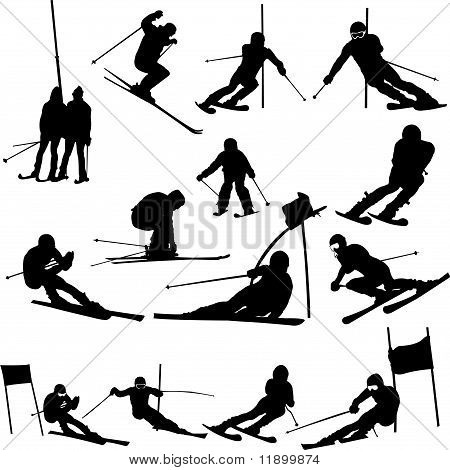 Skiing Colection vector