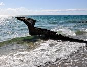 Old SS Wyola rusty metal shipwreck buried at the CY O'Connor Beach in North Coogee, Western Australia with an Indian Ocean seascape and crashing ocean waves. poster