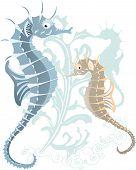 sea-hose in the underwater world vector illustration for design poster