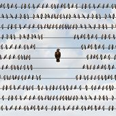 Avoiding risk as a business avoidance concept with a group of birds on a wire staying away from a threatening eagle as a dangerous bird of prey as a metaphor for being vulnerable to impending threats. poster