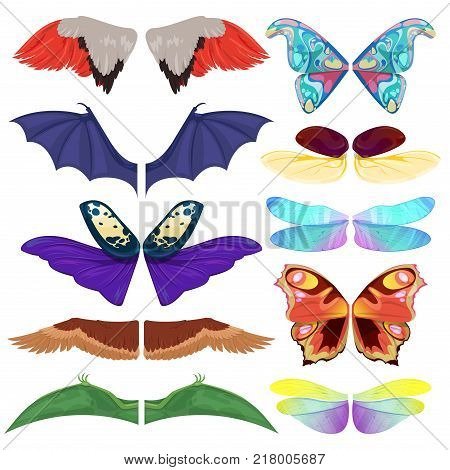 Fairy insect wings vector flying kids carnival costume winged bird bat and butterfly insects with wingspan for halloween party or Christmas isolated on a white background.