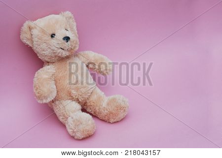 Tedy bear Toy Isolated on pink background