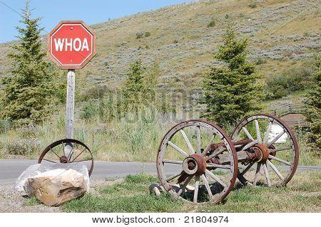 Humorous Jackson Hole, Wyoming, Stop Sign (Whoa)