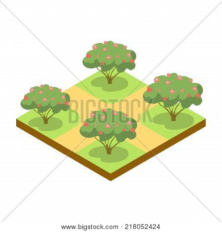 Park alley with apple trees isometric 3D icon. Decorative plant and green grass vector illustration. Nature map element for summer parkland landscape design.