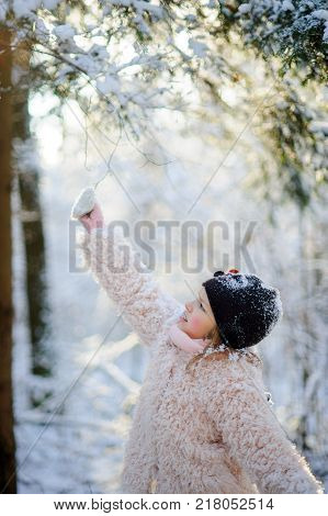 Portrait of the girl of 8-9 years in the winter park. The girl touches a snow-covered branch. From a frost of a cheek of the little belle became ruddy.