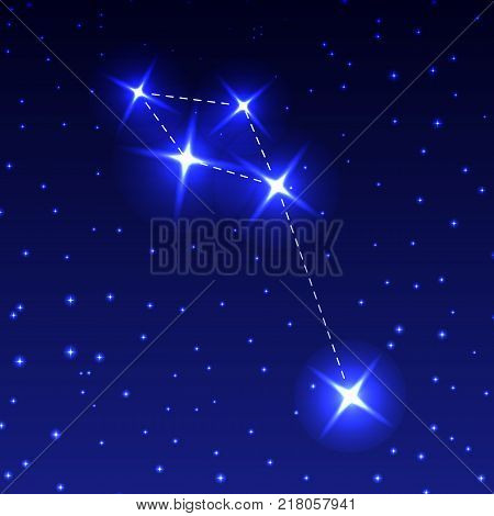 The Dolphin Constellation in the night starry sky. Vector illustration of the concept of astronomy