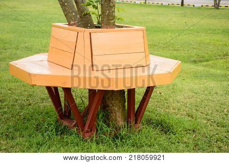 photo of wooden bench under the tree
