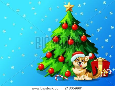 A dog of Welsh Corgi breed and a fir-tree with spheres and star, a Candy cane and gift box on blue with snowflakers. A vector illustration in cartoon style, horizontal