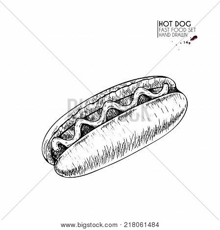 Hand drawn set of fast food. American hot dof with sausage ketchup mustard. engraved vector illustration. Isolated on white. For restaurant menu street food bakery cafe logo flyer banner