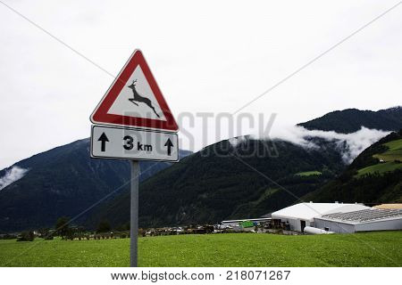 Information board traffic sign Beware of deer at beside road near Burgusio or Burgeis village at Malles Venosta in val Venosta in Trentino-Alto Adige Italy