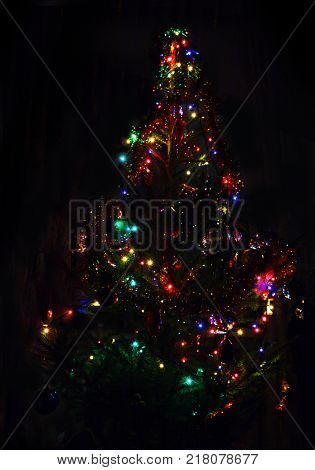 christmas fir with colored lightings at night