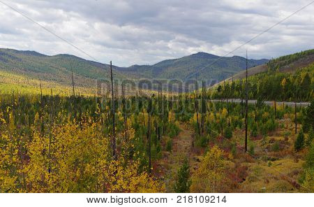 Kurtushibinskiy range of West Sayan Range, Autumn
