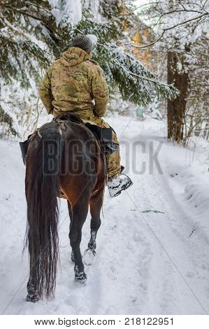 Man rides a horse in winter forest.