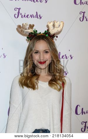 LOS ANGELES - DEC 10:  Brady Reiter at the Chandler's Friends Toy Drive & Wrapping Party  at Los Angeles Ballet Academy on December 10, 2017 in Los Angeles, CA