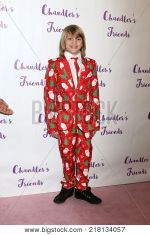 LOS ANGELES - DEC 10:  Mason McNulty at the Chandler's Friends Toy Drive & Wrapping Party  at Los Angeles Ballet Academy on December 10, 2017 in Los Angeles, CA