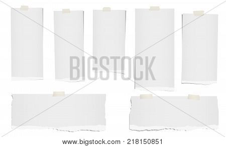 Ripped blank note, notebook paper strips for text or message stuck with adhesive, sticky tape on white background