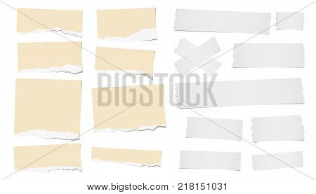 Ripped blank note, notebook paper strips, adhesive, sticky tape for text or message stuck on white background.