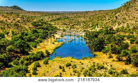 Aerial view of the Ge-Selati River surrounded by Mopane Trees near the Olifants River in the norther part of Kruger Park, a large Game Reserve in South Africa