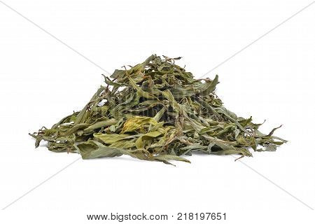 pile of dried stevia rebaudiana bertoni isolated on white background