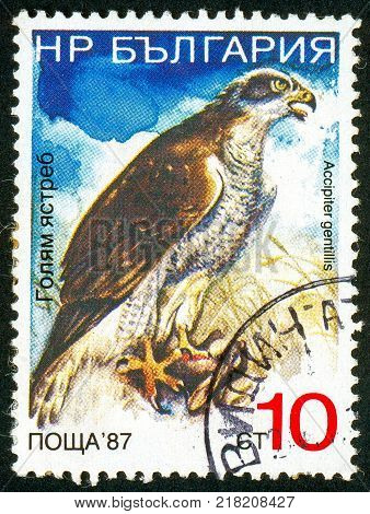 UKRAINE - circa 2017: A postage stamp printed in Bulgaria shows Northern Goshawk Accipiter gentilis Series Birds circa 1988