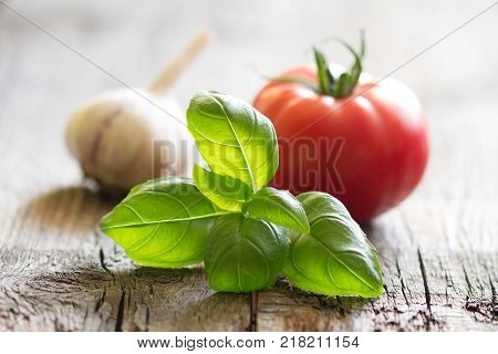 Basil tomato and garlic italian food still life on vintage planks