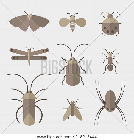 Vector of insects group on white background. Insect. Animal. Insects Icon.