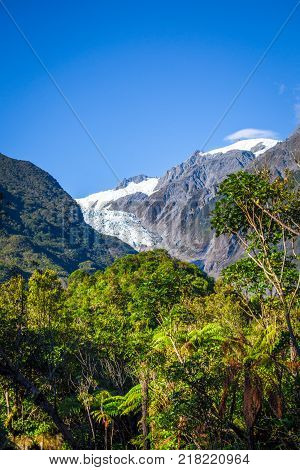 Franz Josef glacier and rain forest landscape New Zealand