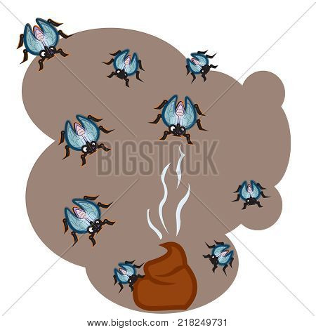 This file represents a group of flies flying around a poop