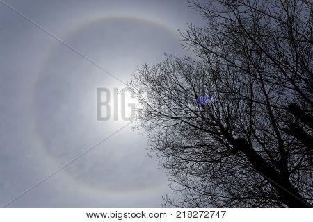 22 Degree Halo - Ring Around The Sun