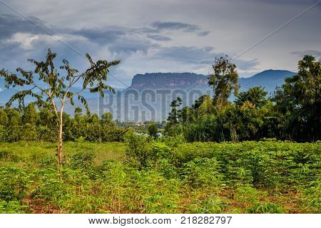 Uganda nature with the Mount Elgon national park in the background.