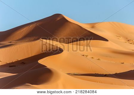 sunshine on golden sand dune in sahara desert