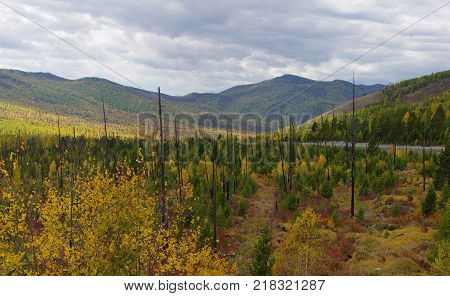 Kurtushibinskiy range of West Sayan Range Autumn