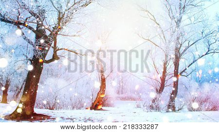 Beautiful Winter landscape scene background with snow covered trees and ice. Christmas landscape. Beauty sunny winter backdrop. Wonderland. Frosty trees in snowy forest. Tranquil winter nature