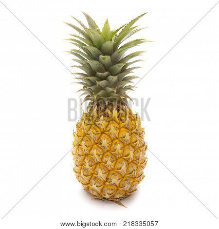Isolated of fresh pineapple fruit on white background