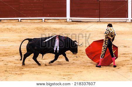 Spanish bullfight. .The enraged bull attacks the bullfighter. Spain Monumental Corrida de toros poster