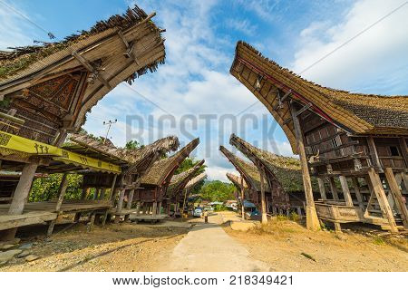 Traditional village of residential buildings with decorated facade and boat shaped roofs. Tana Toraja South Sulawesi Indonesia.