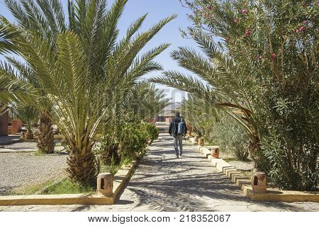 Tinghir Morocco - February 27 2016: Man walking alone in park in Tinghir city of southern Morocco. Tinghir city is at the center of one of the most attractive oases in southern Morocco.