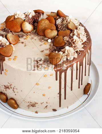 Chocolate Cake with Chocolate Fudge Drizzled Icing and Chocolate Curls and gingerbread on White Backdrop