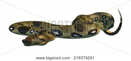 3D Rendering Green Anaconda On White