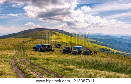 Pylypets Ukraine - July 23 2016: blueberry harvesting in Carpathian mountains. location Gymba mountain of Borzhava ridge. hard and exhausting work concept