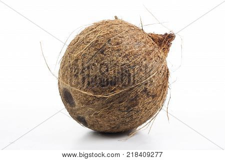 Coconut whole coconut with fiberson isolated white studio background. Closeup photo. Clipping path. Easy to use. White background. Cutout cut out.