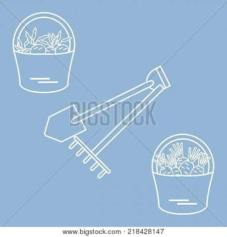 Illustration of harvest: shovel, rake and two buckets of carrots and beets. Design for banner, poster or print.