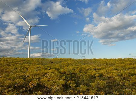 A view of a large modern wind mill from central Kansas.